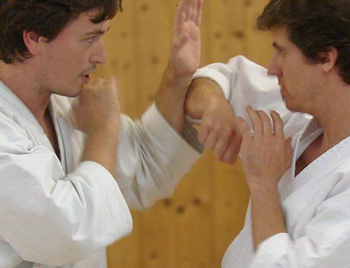 Karate Renzoku Waza