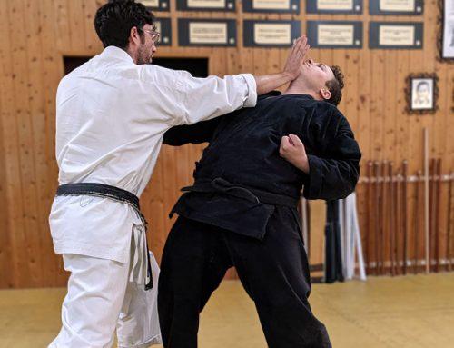 Karate Kumi