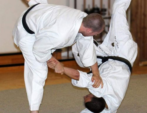 Karate Nage Waza